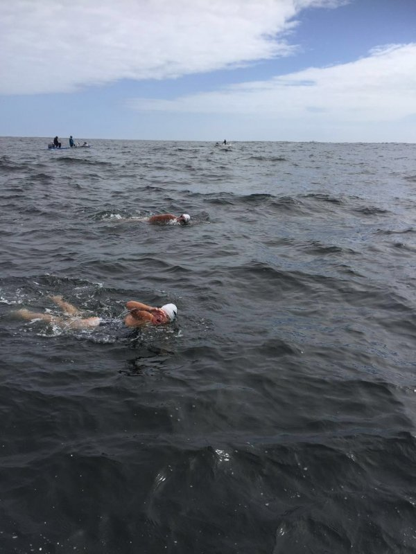 Robben Island Freedom Swim with Lindsay de Kock